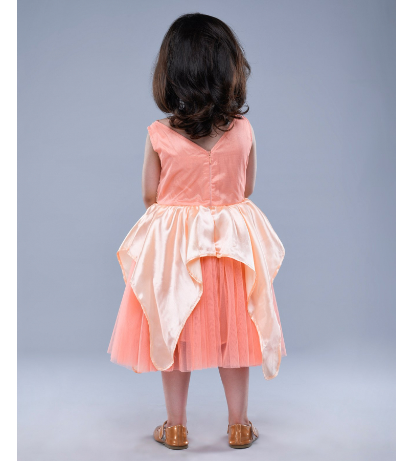 Jelly Jones Floral Embroidered Tulle Flare Peach Dress
