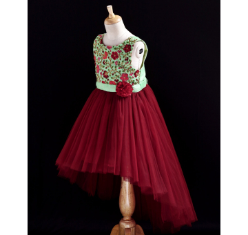 Toy Balloon Sleeveless Flower Embroidered Fit & Flare Maroon Dress