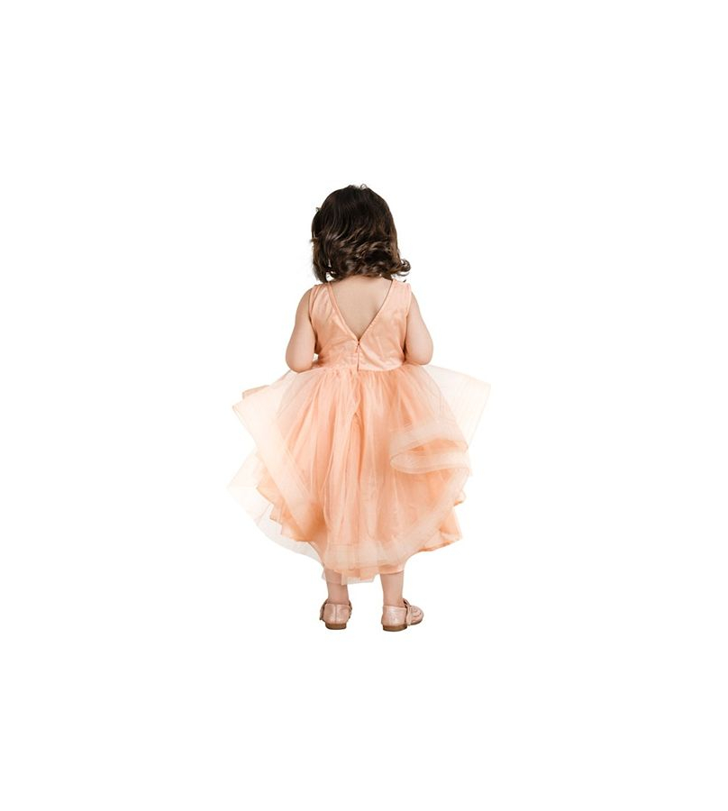 Jelly Jones Plunging Back Floral Work Peach Dress