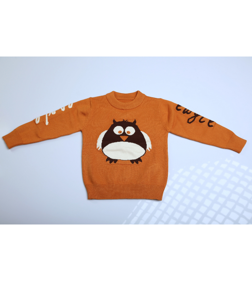 Angry Bird Print Brown Full Sleeves Sweater