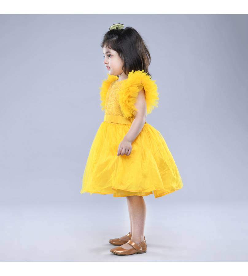 Jelly Jones Yellow Net Embroidered Dress With Flutter Sleeves