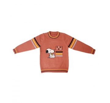 The New Print with Striped Brown Sweater