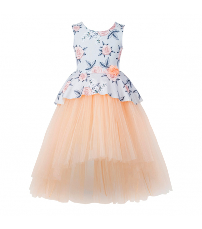 Toy Balloon Fit N Flare Floral Sleeveless Hi-Low Dress - Peach